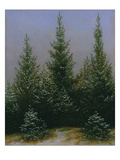 Spruce Forest in Snow (Dresdner Heide I)  ca 1828