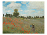 Wild Poppies  Near Argenteuil  1873