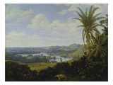 Brasilian Landscape with Anteater Probably 1649