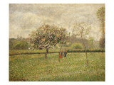 Apple Tree Blossom at Eragny  1888