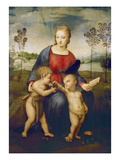Madonna of the Goldfinch  about 1506