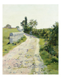Sunny Path  about 1890