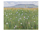 Meadow of Flowers  about 1901