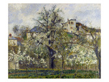 The Vegetable Garden with Trees in Blossom  1877