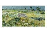 The Plain at Auvers  1890