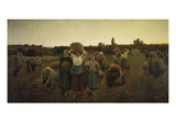 Calling in the Gleaners (Le Rappel Des Glaneuses)  1859