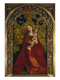 Die Madonna in Der Rosenlaube  1473