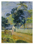Landscape on Tahiti  1899
