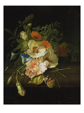 Still Life with Flowers and Butterfly