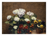 Hydrangeas  Wallflowers and Two Pots of Pansies  1879