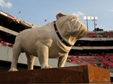 University of Georgia: UGA Statue before the Game in Sanford Stadium