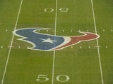 Houston Texans - Sept 9  2012: Texans Logo on the Field at Reliant Stadium