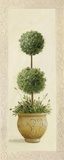 Topiary Ball II Impression sur toile par Welby