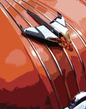 Tail Fins And Two Tones V