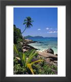 Tropical Beach  La Digue Island  Seychelles