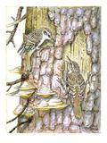 Treecreeper II