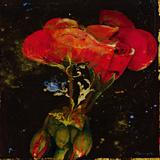 Botany Fleur IV