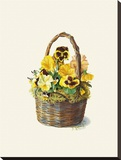Sunshine Pansy Basket