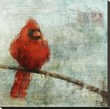 Bird Buddy II