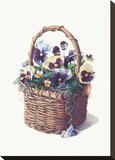 Rustic Pansy Basket