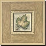 The Fig Leaf