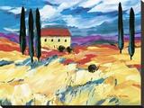 Provence Impression I