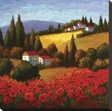 Tuscan Poppies Tableau sur toile par Parrocel