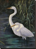 Egrets On Blue