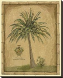 Caribbean Palm III With Bamboo Border
