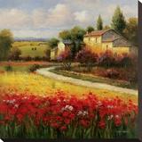 A Tuscan Summer Tableau sur toile par Ben Harris