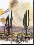 Sonoran Sentinels