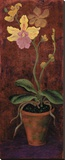 Orchid Panel I