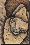 Bison Fragment