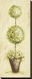 Topiary III