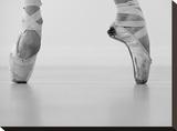 A female ballet dancer Tableau sur toile