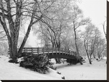 Winter Bridge I