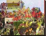 Napa Collage II