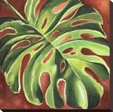 Feuille de Philodendron