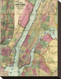 Map of New York and Adjacent Cities  c1874