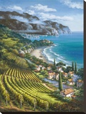 Vineyard Village by the Sea