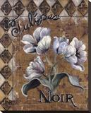 Tulipes Noir