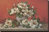 Classical Magnolia II