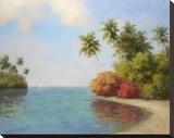 Coco De La Playa