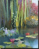 Lilies Adorning The Pond