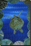 Turtle on Blue