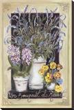 Un Bouquet De Ressort