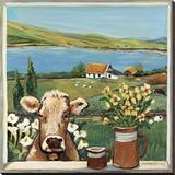 Cow in Window