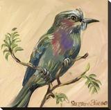 Bird V