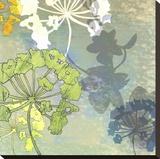 Wildflower Textures