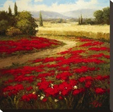 Red Poppy Trail